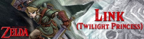Banner Link Twilight Princess - The Legend of Zelda Collection