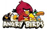 Schiet honderden vogels kapot op zwijnen om een paar eieren terug te krijgen... Goed plan!