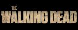 Afbeelding voor The Walking Dead Survival Instinct