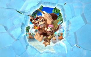 Slinger over de eilanden met de Kong-familie om DK Island terug te veroveren van de Vikingen!