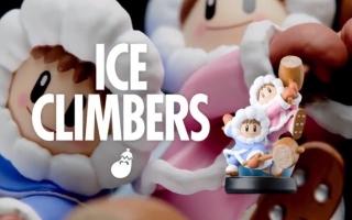 De Ice Climbers komen uit de NES-platformer Ice Climber en vormen samen een vechter in <a href = https://www.mariowii-u.nl/Wii-U-spel-info.php?t=Super_Smash_Bros_for_Wii_U>Smash Bros</a>.!