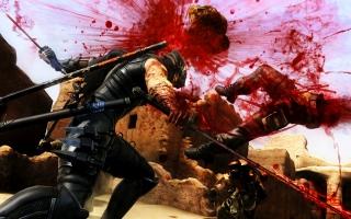 De Ninja Gaiden-serie staat bekend voor een flinke portie bloed!