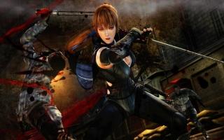 Dankzij een gratis DLC is ook Kasumi uit Dead or Alive speelbaar.