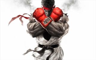 Ryu komt uit de Street Fighter-serie, een legendarische vechtgameserie.